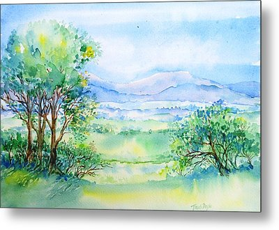 Wicklow Landscape In Summer Metal Print by Trudi Doyle