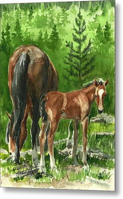 Wild Alberta Mare And Foal Metal Print