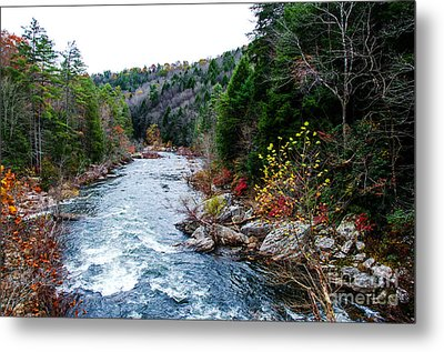 Wild And Scenic Obed River Metal Print by Paul Mashburn