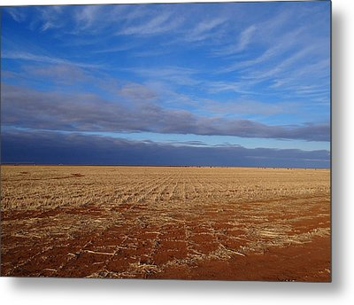 Metal Print featuring the photograph Wild Blue by Tom DiFrancesca