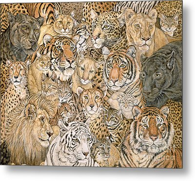 Wild Cat Spread Metal Print by Ditz