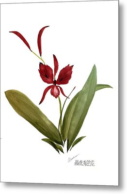 Wild Chinese Orchid #2 Metal Print by Alethea McKee