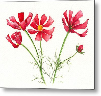 Metal Print featuring the painting Wild Cosmos by Nan Wright