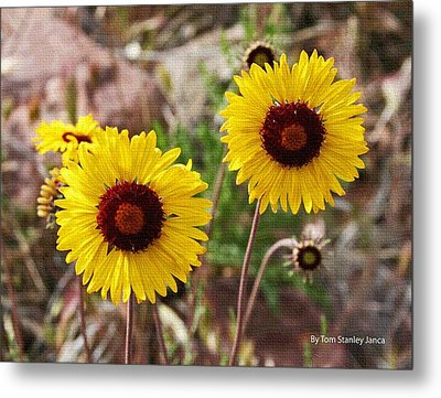 Metal Print featuring the photograph Wild Flowers Above The Rim by Tom Janca