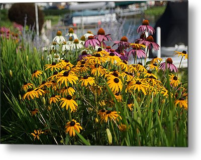 Wild Flowers By The Lake Metal Print by Thomas Fouch