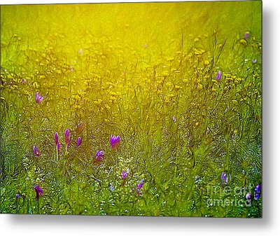 Wild Flowers In Morning Light Metal Print