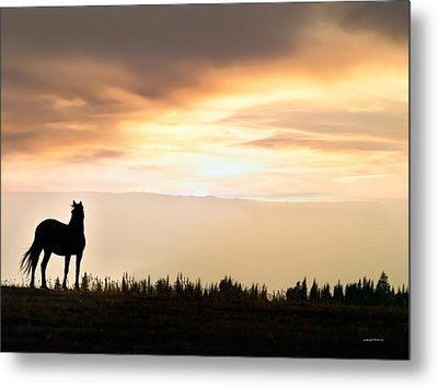 Wild Horse Sunset Metal Print by Leland D Howard