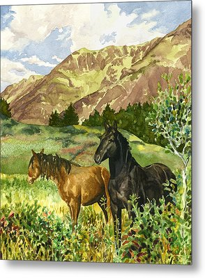 Wild Horses Metal Print by Anne Gifford