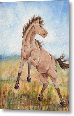 Metal Print featuring the painting Wild Mustang With Attitude by Rebecca Davis