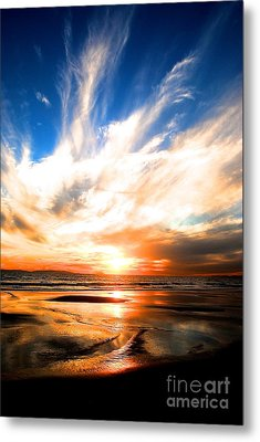 Wild Night Sky Metal Print