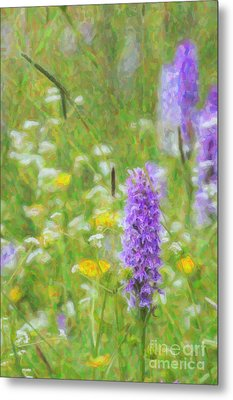Wild Orchid Watercolour  Metal Print by Tim Gainey