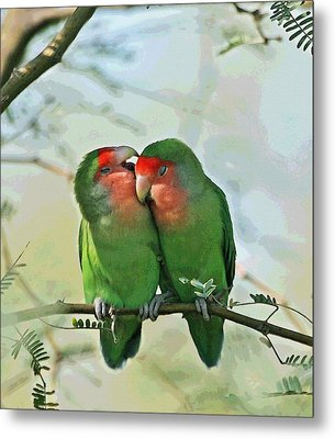 Metal Print featuring the photograph Wild Peach Face Love Bird Whispers by Tom Janca