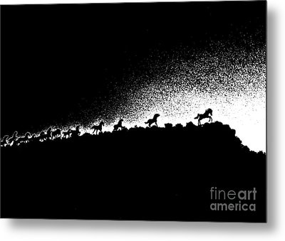 Wild Stallions Silhouette Metal Print by Chuck Flewelling