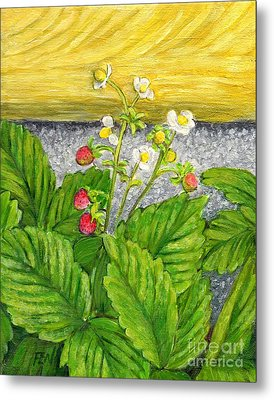 Metal Print featuring the painting Wild Strawberries In Summer by Jingfen Hwu