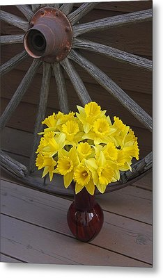 Metal Print featuring the photograph Wild West Daffodils by Diane Alexander