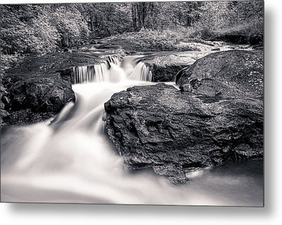 Wilderness River Metal Print