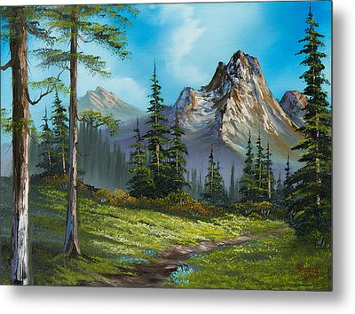 Wilderness Trail Metal Print by C Steele