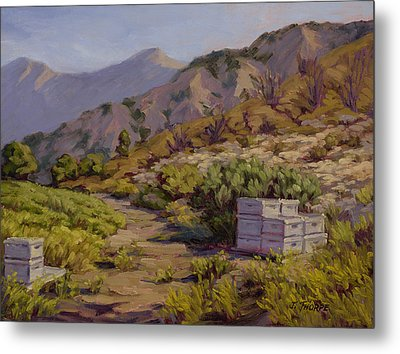 Wildflower Honey Fields Metal Print by Jane Thorpe