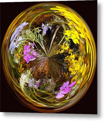 Metal Print featuring the photograph Wildflower Paperweight by Gary Holmes