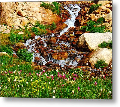 Wildflower Waterfall Metal Print by Tranquil Light  Photography