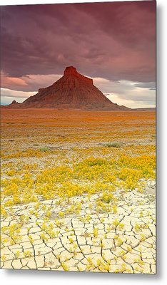Wildflowers At Factory Butte. Metal Print