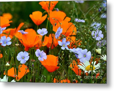 Metal Print featuring the photograph Gabriella's Flowers by Lisa L Silva