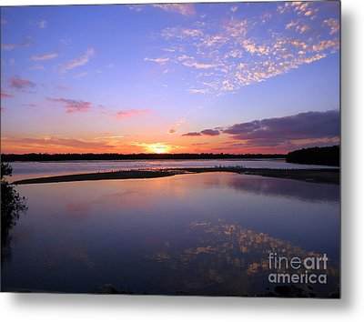 Wildlife Drive Sunset Metal Print by Patricia Januszkiewicz