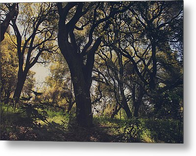 Wildly And Desperately My Arms Reached Out To You Metal Print by Laurie Search