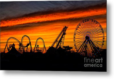 Wildwood At Dawn Metal Print by Mark Miller