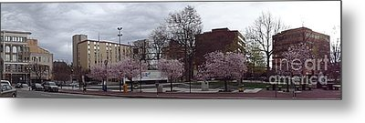 Wilkes-barre In Bloom Metal Print by Christina Verdgeline