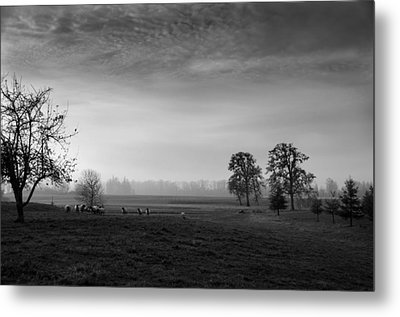 Willamette Valley Evening Metal Print