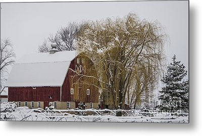 Willow And Barn After Nemo Metal Print
