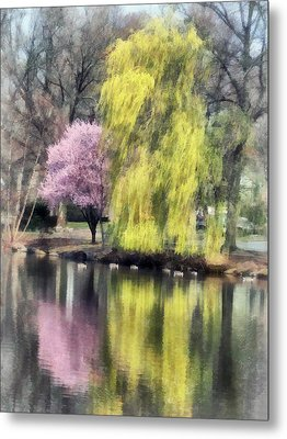 Willow And Cherry By Lake Metal Print by Susan Savad