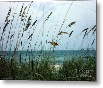 Metal Print featuring the photograph Wind Dancers by Megan Dirsa-DuBois