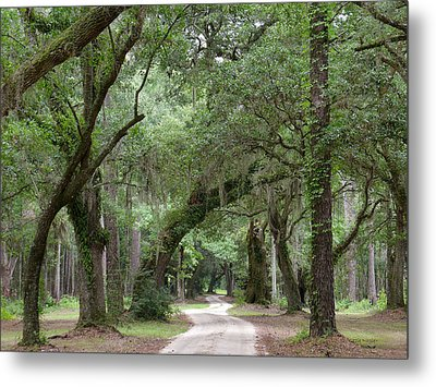Winding Dirt Road Metal Print