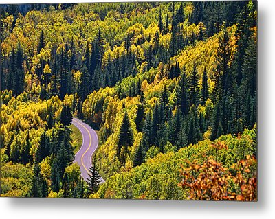 Winding Road Metal Print