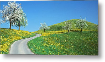 Winding Road Canton Switzerland Metal Print by Panoramic Images