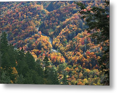 Winding Road Smoky Mountains Metal Print by Robert Anderson