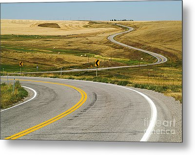 Winding Road Metal Print by Sue Smith