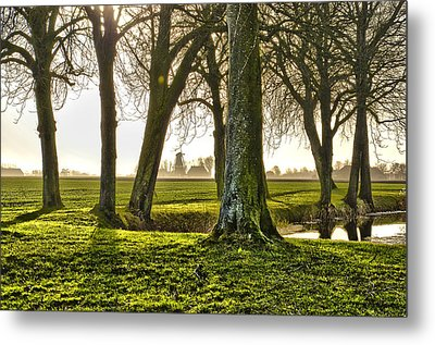 Windmill And Trees In Groningen Metal Print