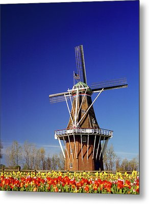 Windmill In A Tulip Field, De Zwaan Metal Print by Panoramic Images