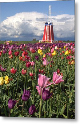 Windmill In The Tulips Metal Print by Suzy Piatt