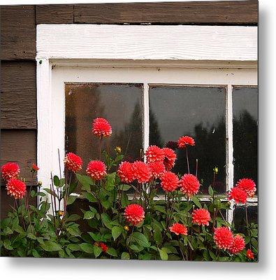 Metal Print featuring the photograph Window Box Delight by Jordan Blackstone