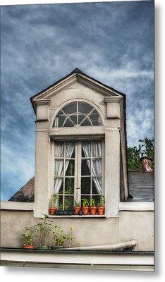Window Garden Metal Print by Brenda Bryant