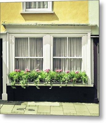 Window Garden Metal Print by Tom Gowanlock