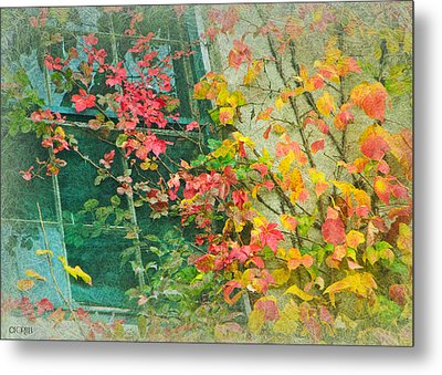 Metal Print featuring the photograph Window Of Autumn by Lorella  Schoales