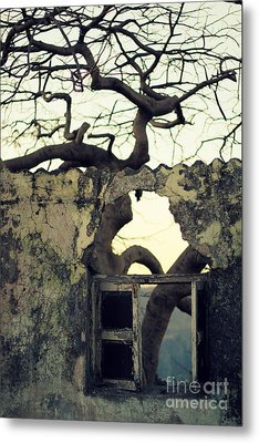 Window Metal Print by Vishakha Bhagat