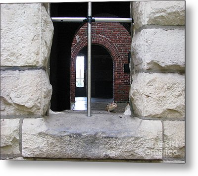 Window Watcher Metal Print