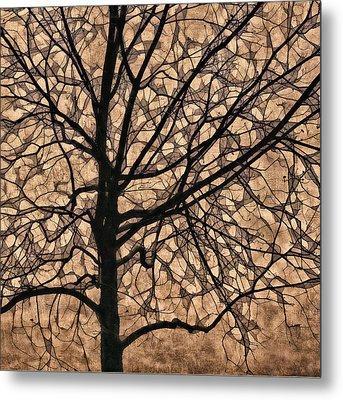Windowpane Tree In Autumn Metal Print