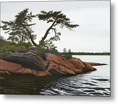 Windswept Metal Print by Kenneth M  Kirsch